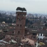 The Guinigi tower - Lucca
