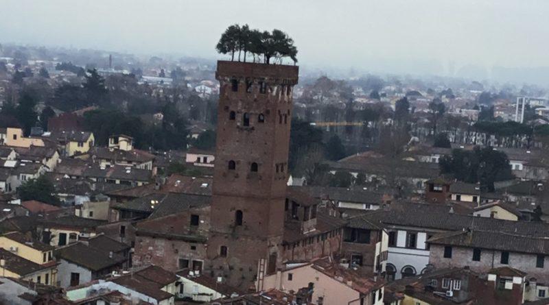 The Guinigi tower – Lucca